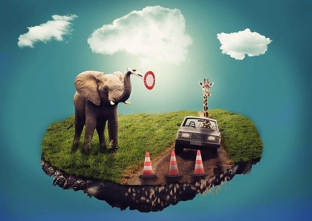 Floating island of grass, with an elephant acting as a crossing guard, and a giaraffe driving a car
