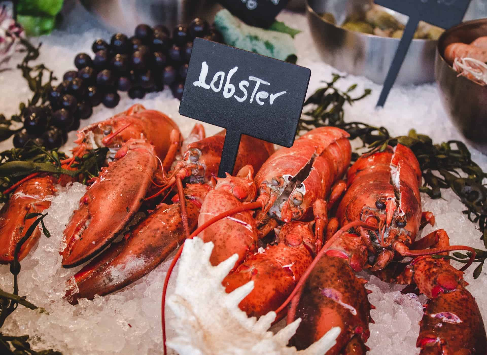 Lobster in a bucket of ice with a sign with